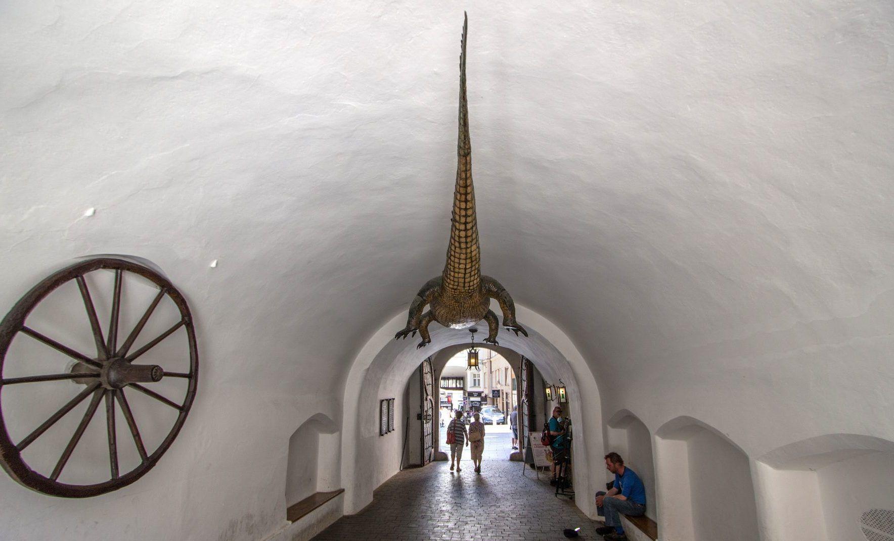 Stará radnice v Brně - infocentrum pod krokodýlem