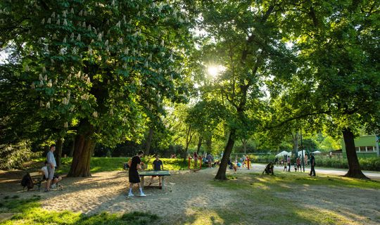 Park Lužánky, Jan Cága