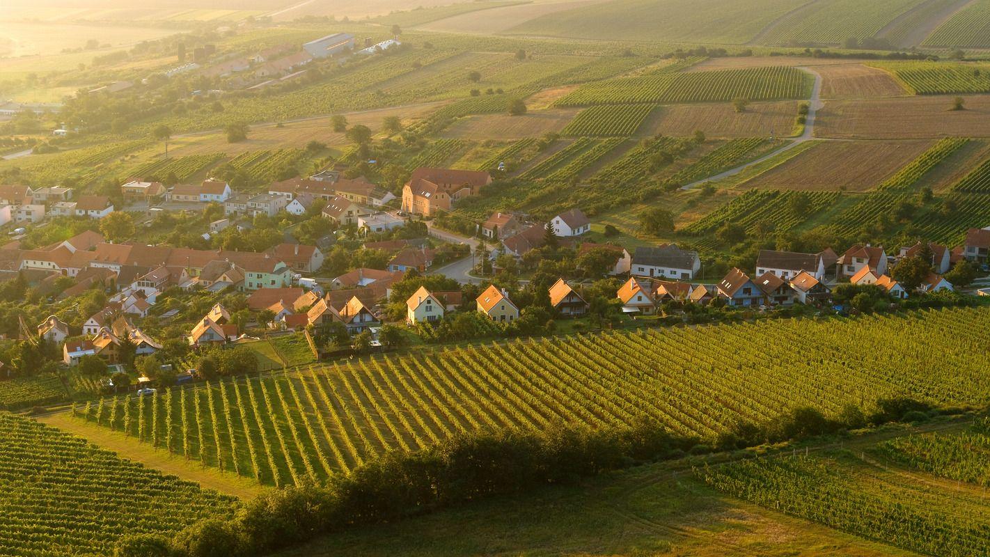 Pálava, foto: Czech tourism